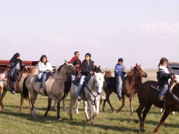 Youth and Horses